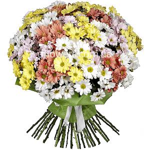 Доставка цветов торез донецкая область доставка цветов минск недорого тюльпаны
